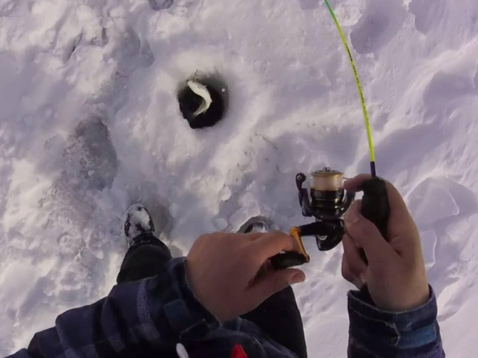 2016 ice fishing for cisco herring on lake simcoe youtube for Cisco s sportfishing fish count