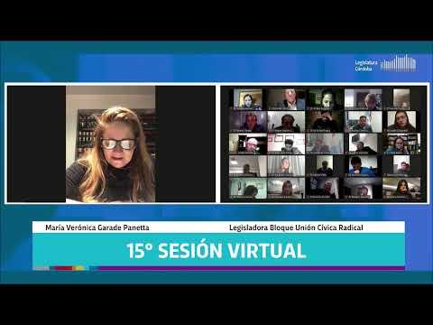 Decimoquinta Sesión Virtual - 142 Período Legislativo