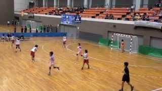 2011高校総体 ハンドボール徳島県予選女子決勝 鳴門対城北