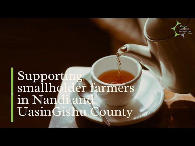 EldoTea Enterprises: Supporting small holder farmers in Nandi and UasinGishu County