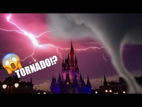 Was There a TORNADO in Disney World? | WDW Vlog | Alanna Grace