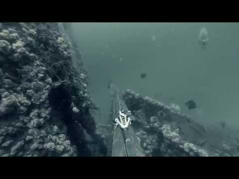 Compilation chasse sous marine Gabon 2014