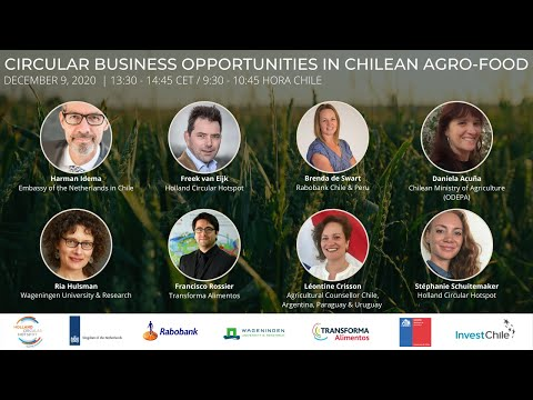 Webinar Business Opportunities in the Chilean Agro-Food sector
