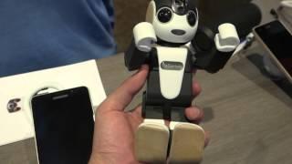 tinhtevn - tren tay dien thoai robot sharp robohon