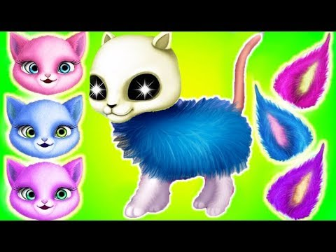Play Fun Kitten Pet Care - Cat Hair Salon Birthday Party - Dress Up Hair Salon Birthday Care Games