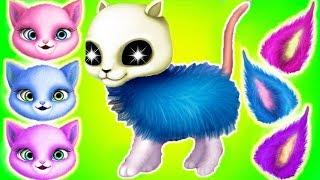 Play Fun Kitten Pet Care - Cat Hair Salon Birthday Party - Dress Up Hair Salon Birthday Care Games