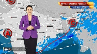 Weather Forecast for Oct 14: WeatherSystem to bring back rains in Kerala, AP, and Tamil Nadu