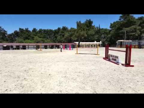 Engel Atlama Atları - Power Prinz - İzmir Ege Atlı Spor Kulubu