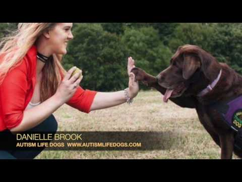ART IN FUSION TV - interview with Danielle Brooks - Autism Life Dogs