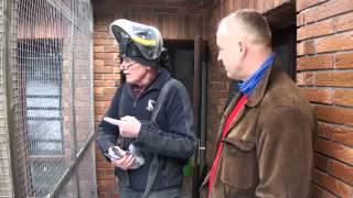 Hans Hirn (Niemcy) - część 2 - hodowla - 04.02.2014r.
