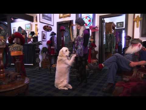 Gordon - Moorabool Shire Promotional Video