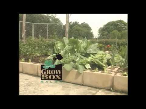 GROWBOX Advertisement:  Trinidad And Tobago Ministry Of Agriculture
