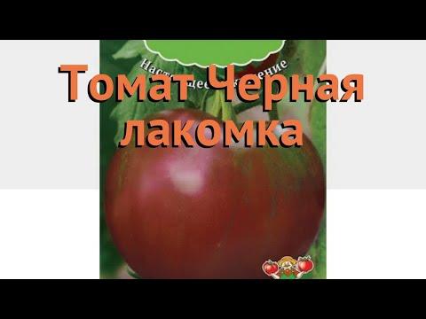 Томат обыкновенный Черная лакомка 🌿 обзор: как сажать, семена томата Черная лакомка