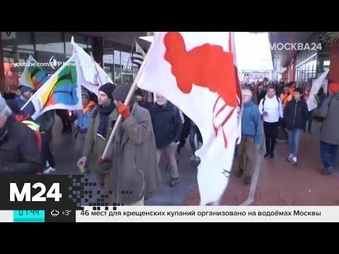 Актуальные новости мира за 17 января: палестинцы атаковали Израиль воздушными шарами - Москва 24