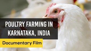 Poultry Farming In Karnataka - English
