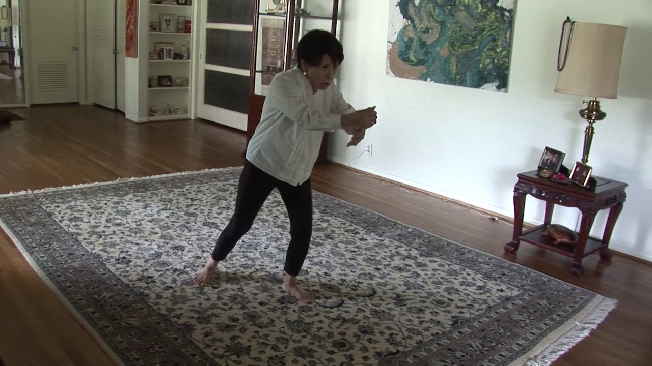 Download Rose Pu performs Yang Style Long Form 150 Postures Tai Chi T T Liang version