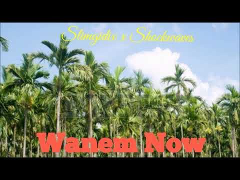 Slim Gidix x Shockwaves - Wanem Nau Mp3