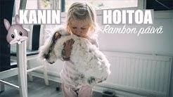 Kanin hoito | Angorakani Rambo | ELÄIMET