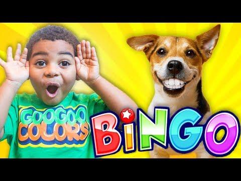 BINGO DOG SONG +MORE NURSERY RHYMES WITH LYRICS