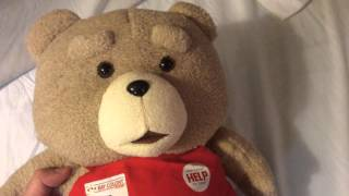 Ted Teddy Bear - Ted Bear Review