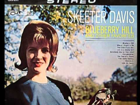 Silver Threads And Golden Needles Skeeter Davis With