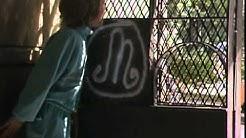 Mummo - Graffiteja (1988)