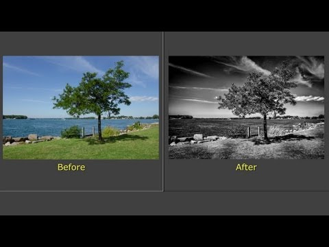 Processing a Photo With Nik Silver Efex Pro 2 & Lightroom (Training Tutorial)