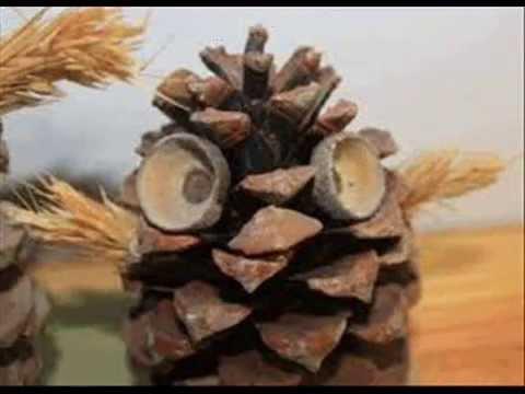 Manualidades con pi as para los mas peque os 1 youtube - Manualidades navidad con pinas ...