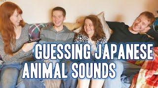 Guessing Japanese animal sounds 日本語で動物の鳴き声当て
