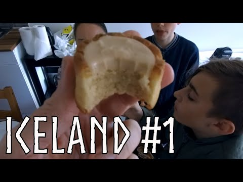 Iceland Travel. CRAZY Expensive  Food. Our (Only) Trip to the Hospital (2019)