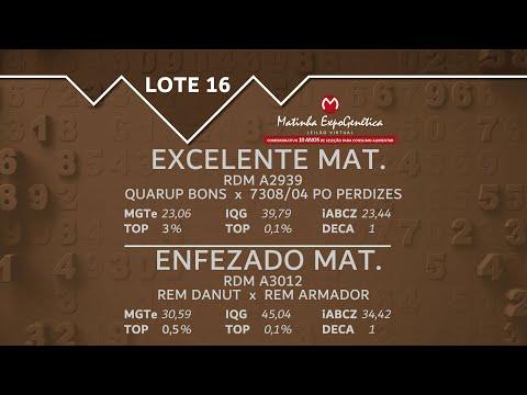 LOTE 16 MATINHA EXPOGENÉTICA