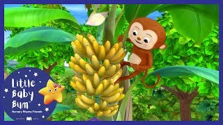Animals Feeding Song + More! | Little Baby Boogie | LBB | Nursery Rhymes For Babies