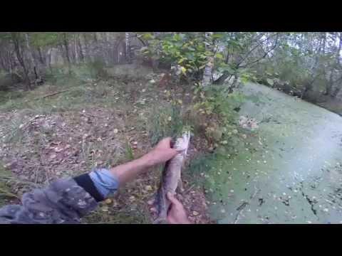ловля зимними жерлицами летом