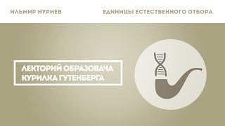 Ильмир Нуриев — Единицы естественного отбора. Эволюция с точки зрения гена