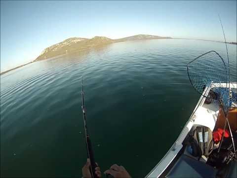 South Africa Fishing - West Coast - Langebaan - Fishing Boys