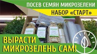 СУПЕР НАБОР ДЛЯ ВЫРАЩИВАНИЯ МИКРОЗЕЛЕНИ СТАРТ | Как посеять семена микрозелени | Дарим Набор СТАРТ!