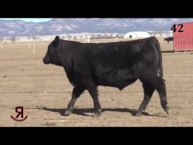 Reverse Rocking R Ranch Lot 42