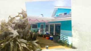"""Calypso"" Cardiff by the Sea beach home ~ Maverick Painting"