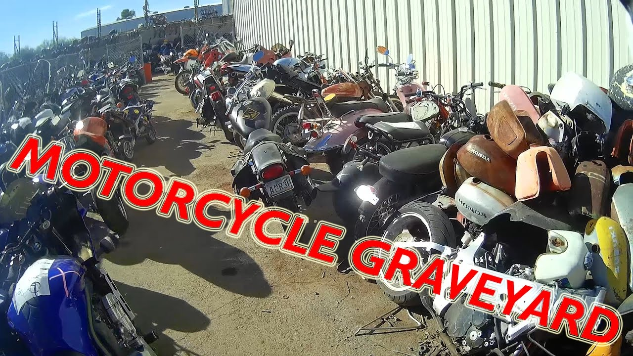 Mc Graveyard Bob S Used Motorcycle Parts Youtube