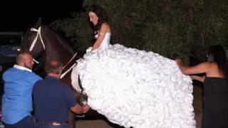 Γάμος με Άμαξα - Φάρμα Γκοσδής - www.amaxa.eu