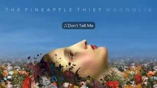 The Pineapple Thief - Don't Tell Me