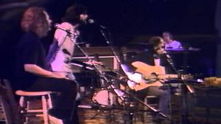 Neil Young-Only Love Can Break Your Heart live 1974