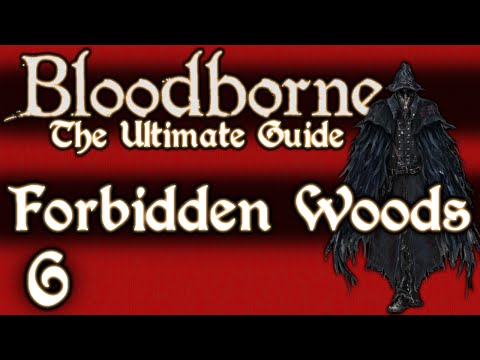 BLOODBORNE : THE ULTIMATE GUIDE 100% - PART 6 - FORBIDDEN WOODS + SHADOW OF YHARNAM
