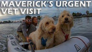 maverick-s-urgent-vet-visit-s5-e04
