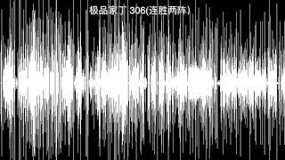 极品家丁 306连胜两阵)