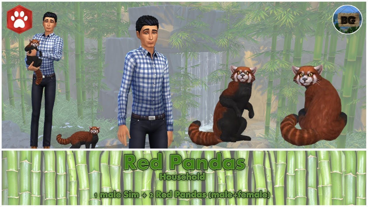 bakies the sims 4 create a pet red panda youtube. Black Bedroom Furniture Sets. Home Design Ideas