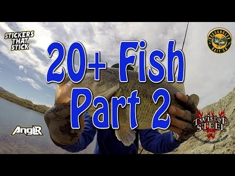 An Amazing Day Bass Fishing | My Pond Tackle Box Contents Part 2