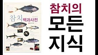 일식요리 스시야 의 핵심 생선!  참치백과사전!  참치…