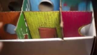 Лабиринт для джунгарского хомяка