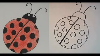 ladybug drawing draw step easy drawings paintingvalley